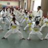 KBRoy Karate Classes